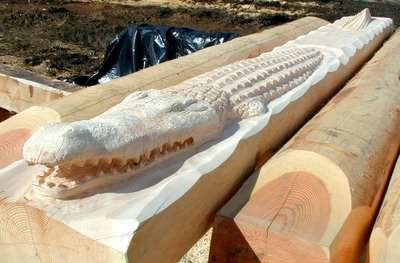 How about a log crocodile??