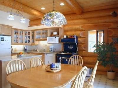 Log cabin interior - kitchen area